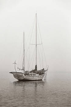 Morning Fog by Bob Stevens