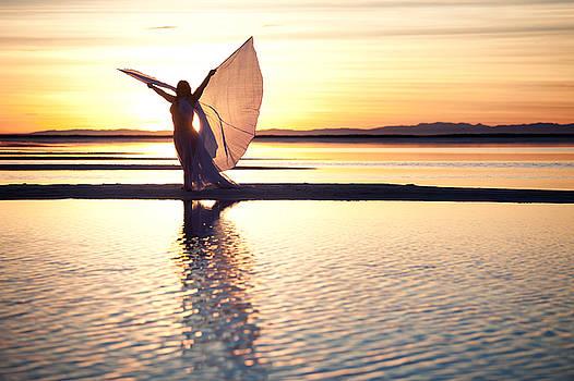 Morning Glory by Dario Infini