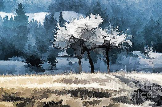 Roland Stanke - Morning light
