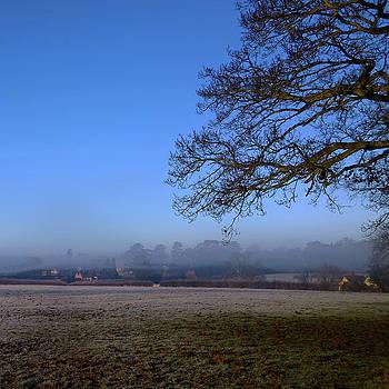 Morning Mist by Anne Kotan