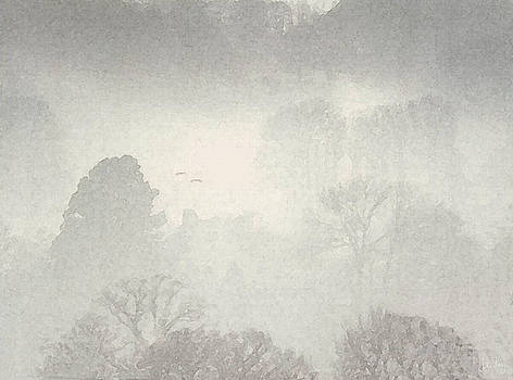 Morning Mist by Julian Perry