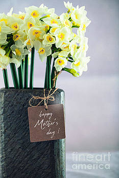 Mother's day concept by Mythja Photography