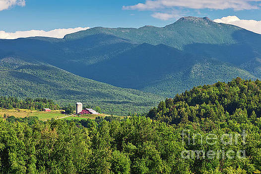 Mount Mansfield Summer by Alan L Graham