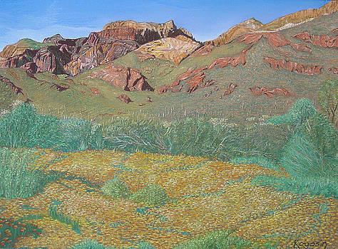 Mountain Flowers by Harvey Rogosin