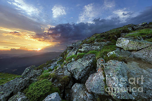 Mountain Slope In Summer At Evening by Michael Lesiv