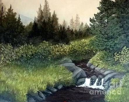 Mountain Stream by Peggy Miller