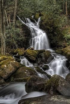 Mouse Creek Falls by David Hopkins