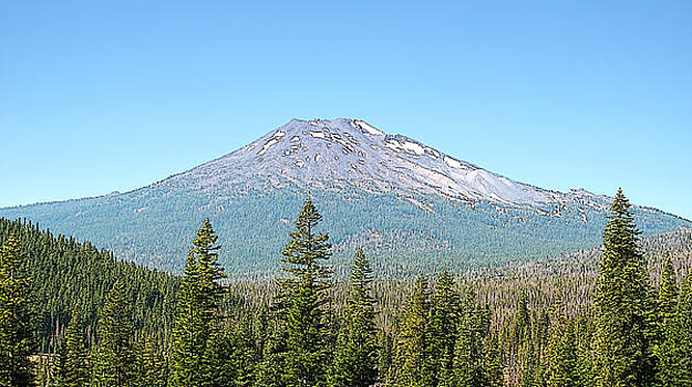 Mt Bachelor by Larry Darnell