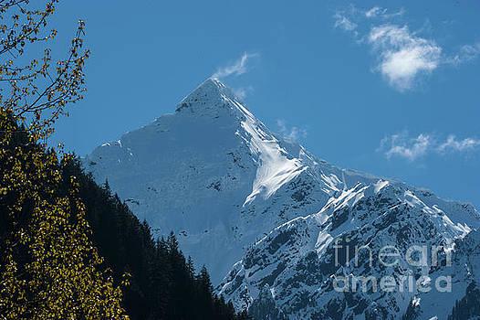 Rod Wiens - Mt Cheam