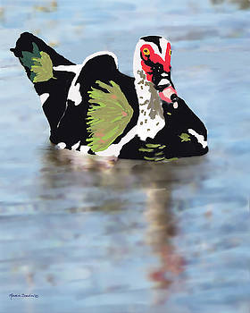 Muscovie Duck by Rosalie Scanlon