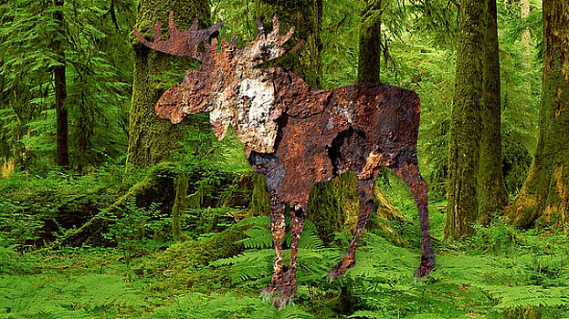 My My Moose by Marvin Blaine