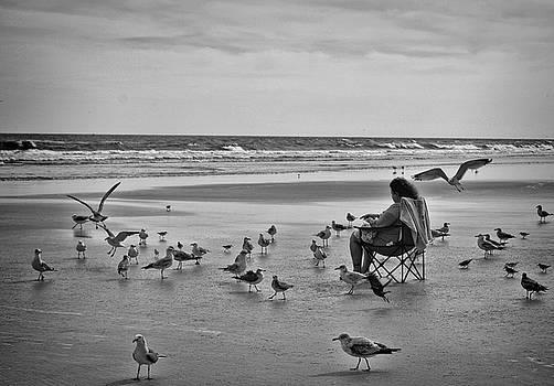 Kathy McCabe - Feeding the Birds on Daytona Beach