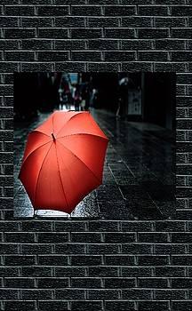 My Umbrella On A Wet Day Art  by Sheila Mcdonald