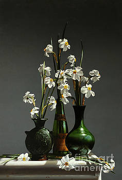 Narcissus by Larry Preston
