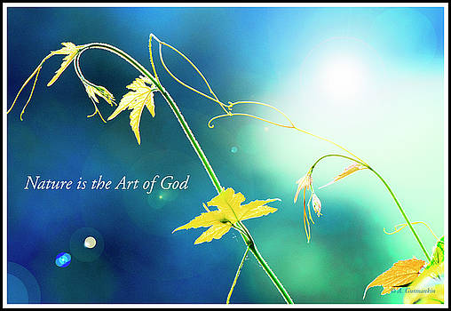 Nature is the Art of God by A Gurmankin