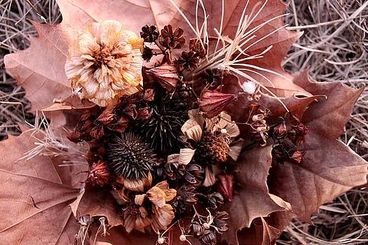 Nature's Autumn Bouquet by Maria Young