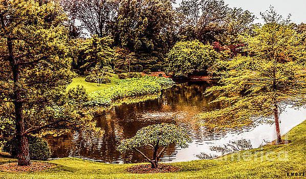Nature's Painting by Kanisha Moye