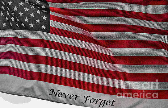 Never Forget by Jim Lepard