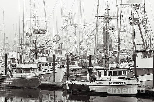 Newport, Oregon Fishing Fleet by Jerry Fornarotto