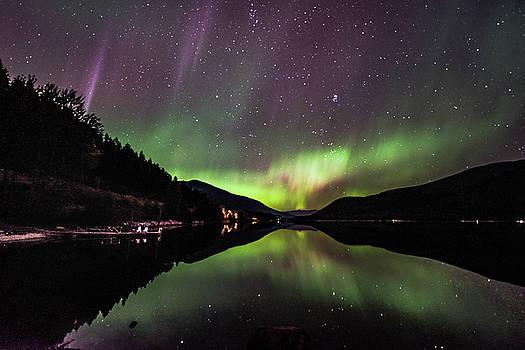 Night Glow by Joy McAdams