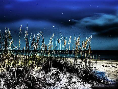 Night Moves by Randy Sylvia