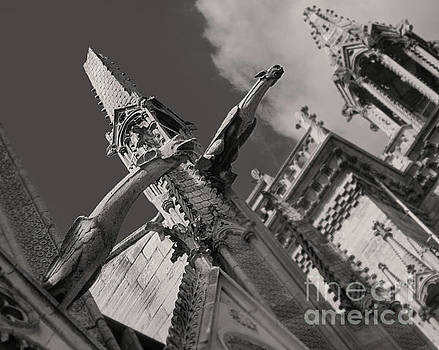 Gregory Dyer - Notre Dame Cathedral Gargoyles