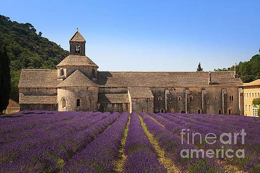 Notre-Dame de Senanque  Abbey Provence France by Peter Noyce