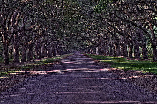 Jason Blalock - Oak Alley HDR