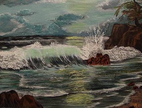 Ocean Shore by Julio Palomino