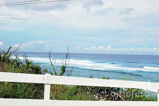Gary Wonning - Ocean View