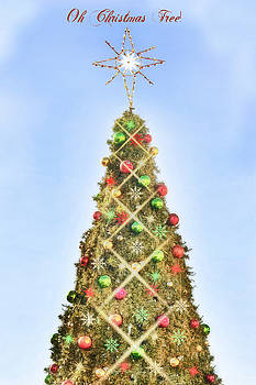 Oh Christmas Tree by Joan Bertucci