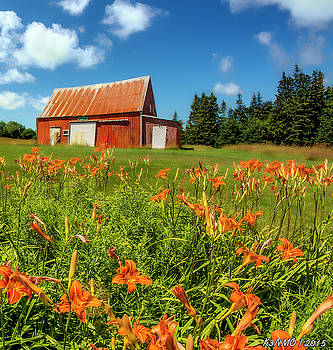 Old Barn in Cape Breton #2 by Ken Morris
