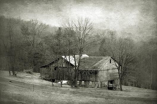 Old Barn  by Stephanie Calhoun