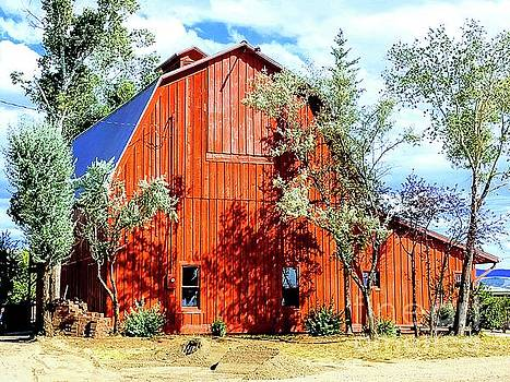 Old Red Barn by Carole Martinez