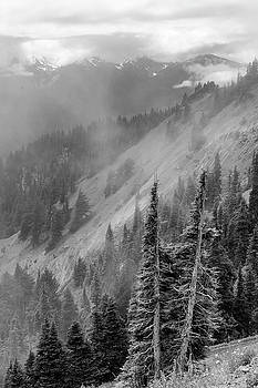 Olympic Range from Hurricane Ridge by Peter J Sucy