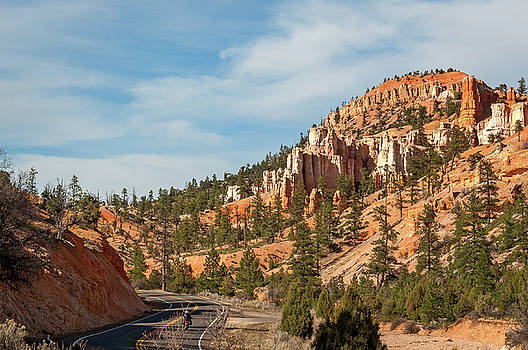 On the road to Bryce Canyon by Daniela Constantinescu
