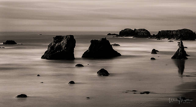 Oregon Coast - 8710-B,SW by Wally Hampton
