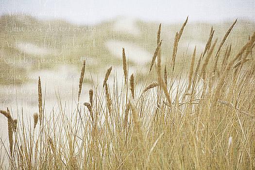 Bonnie Bruno - Oregon Dunes