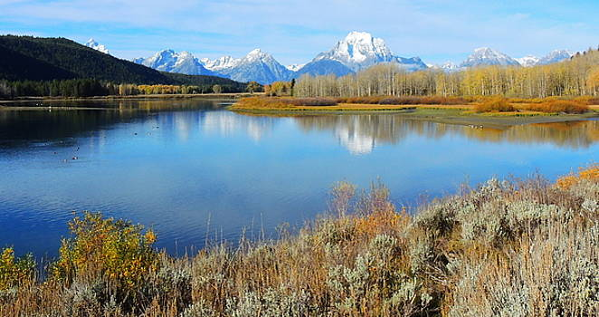 Oxbow Bend by Charlotte Schafer