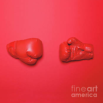 Pair of red boxing gloves on red background - Flat lay minimal d by Aleksandar Mijatovic