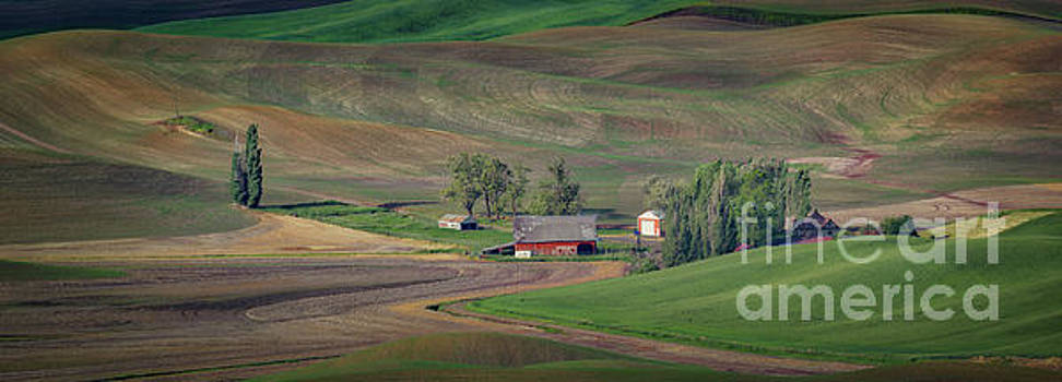 Palouse Farm  by Jerry Fornarotto