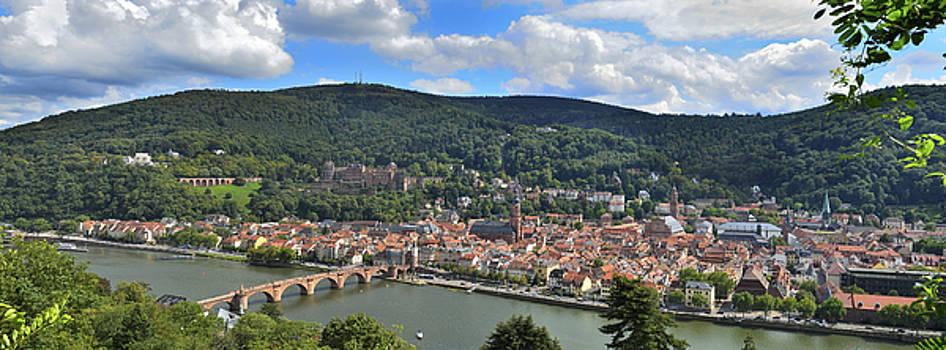 Panorama Heidelberg by Travel Images Worldwide