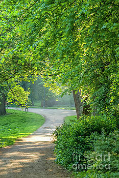 Park in early morning light by Patricia Hofmeester