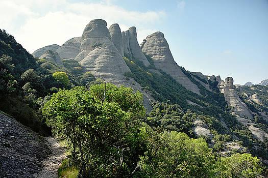 Svetlana Sewell - Path to the Mountains