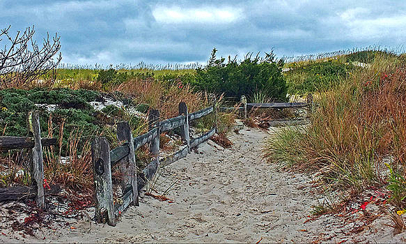 Path To The Sea by William Walker