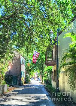 Patriotic Street by Debbi Granruth