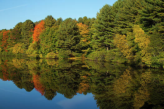 Karol Livote - Peaceful Autumn