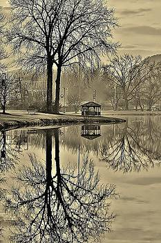 Pecks Pond in Sepia by Thomas McGuire