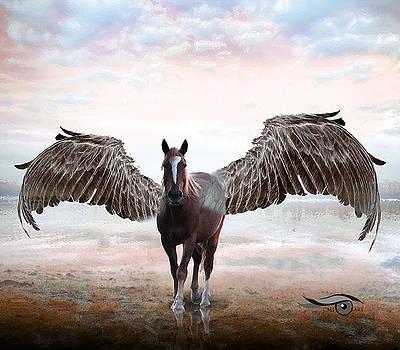 Pegasus by Cmi Art