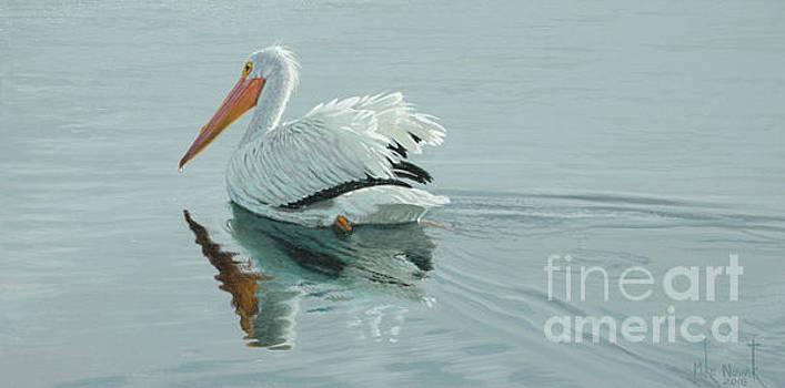 White Pelican by Michael Nowak